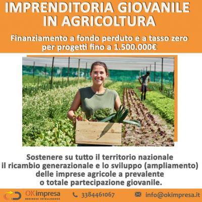 Imprenditoria giovanile in agricoltura